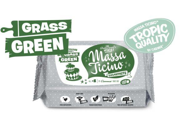 Massa Ticino Tropic grün 250g